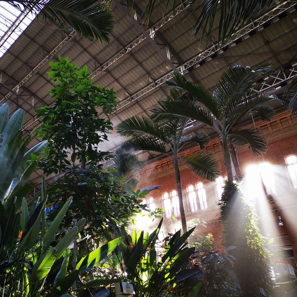 Jardín tropical Atocha